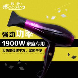 彩诗新品学生专用大功率美发吹风机BBT-9038(新疆 内蒙古 青海 西藏停发)