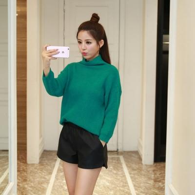 蓝莓家2016春款女装韩版高领长袖宽松显瘦加厚毛衣针织衫 8827