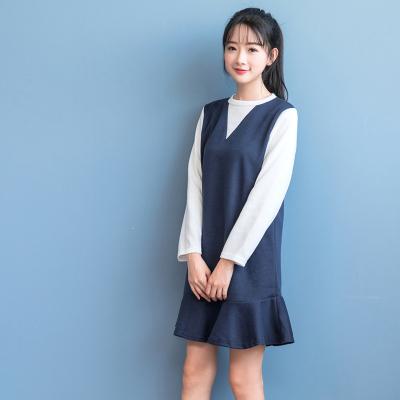蓝莓家 2017春装新款百搭小清新打底裙女学生长袖显瘦连衣裙 704