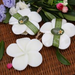 碧芙曼 泰国香蕉菠萝芒果鸡蛋花精油皂沐浴嫩白保湿可爱水果手工礼品香皂