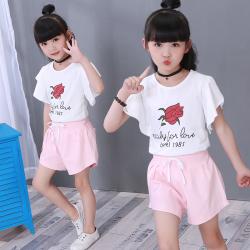女童套装夏季新款3韩版时尚4纯棉5两件套6女孩7短袖8t恤9岁中小童