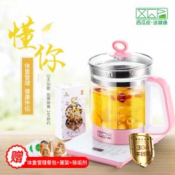 [预售款]XGP西瓜皮养生壶全自动分体办公家用营养壶正品中药煲壶煮茶壶烧水壶