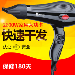 XINGYA 电吹风 BYD-8309