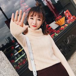 恩黛 冬季新款2017韩版宽松高领毛衣女显瘦套头针织打底衫上衣 F6191