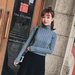 恩黛 2017秋冬新款韩版女装高领长袖针织衫打底衫毛衣 Q047F6179