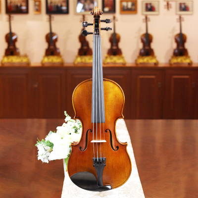 琴界-小提琴QJV-17