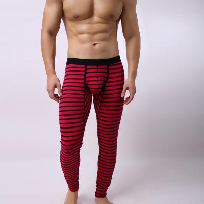 厂家直销隆将新款男士保暖纯棉条纹秋裤修身全棉打底秋裤代发435
