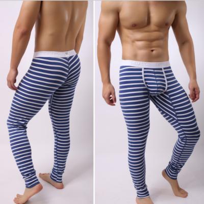 厂家直销隆将新款男士保暖棉条纹秋裤修身棉打底秋裤代发435