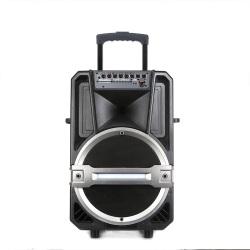 双泰家用低音炮台式机电脑超重低音喇叭15寸电瓶箱ST-C003