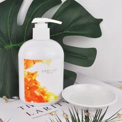 柑凈小屋 靜岡綠茶洗手液300ml