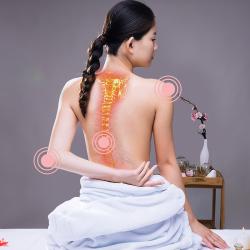 基础脊柱养护