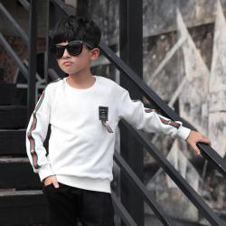 衫匙號 新款时尚男童装潮流中大男童长袖T恤 A3312035