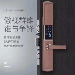 TT10智能锁 自动阻尼滑盖 6大开门模式 锌合金面板材质