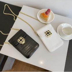 女士包包女包新款2020斜挎包迷你时尚链条手机包锁扣单肩包 AMZ1060