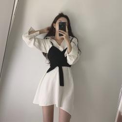 韩未女神范赫本轻熟风网红街拍少女气质穿搭甜美职业短裙两件套装秋季83258