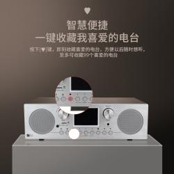 Ocean Digital 海弦网络收音机(带遥控器)WR-800D双喇叭多功能立体扩音机家用插电FM自动搜台