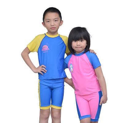 【限时秒杀】水丰泳具 男女童泳衣套装 06